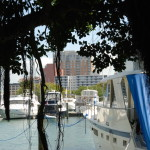 Condos Sarasota and Marina Jacks