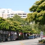 Downtown Sarasota Main Street 3